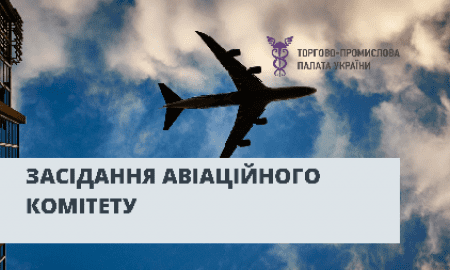 Online Meeting of the Aviation Committee